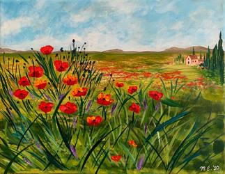 Italian Poppy Field 2