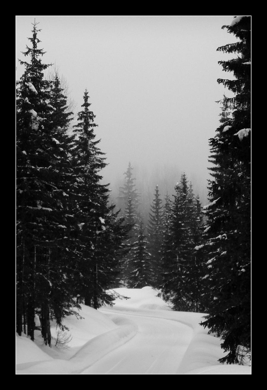 La niebla empieza a caer by Henriksen