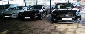 3 Mustangs Convertible