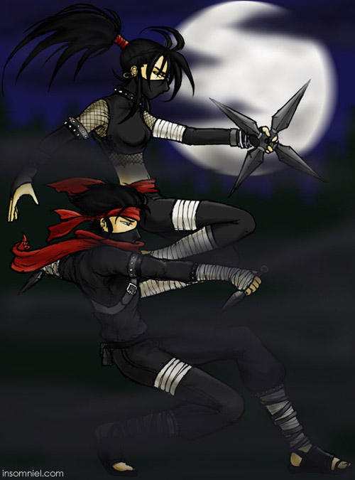 Ninjas of the Shadows by insomniel