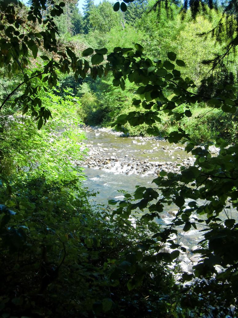 Hidden River by Sadict