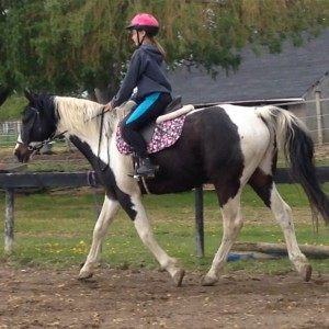 Appaloosa129's Profile Picture
