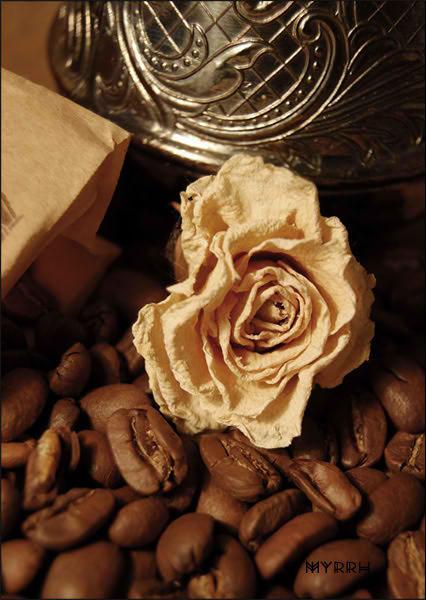 Coffeemania .1. by Condanna