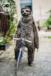 realistic sloth costume II