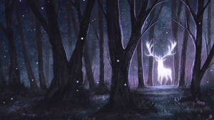 Celestial Forest by Kanizo