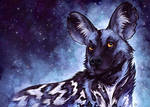 Cosmic Painted Dog