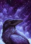 Celestial Raven