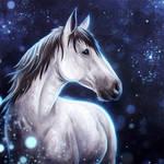 Starlit - Commission