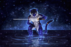 Reflections - Commission