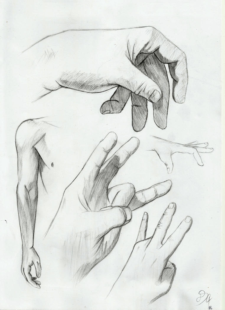 Hand Anatomy Studies By Dsc The Artist On Deviantart
