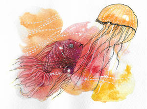 (Gold)Fish And (Jelly)Fish