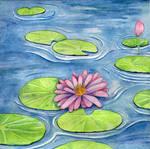 Lotus Flower (1807)