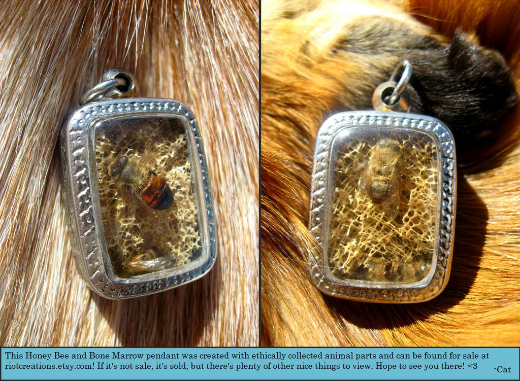 Honey Bee and Bull Bone Marrow Pendant - For Sale! by ...