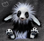 Panda Leshky