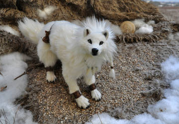 Tikaani_ the hunter of the tundra by LisaToms