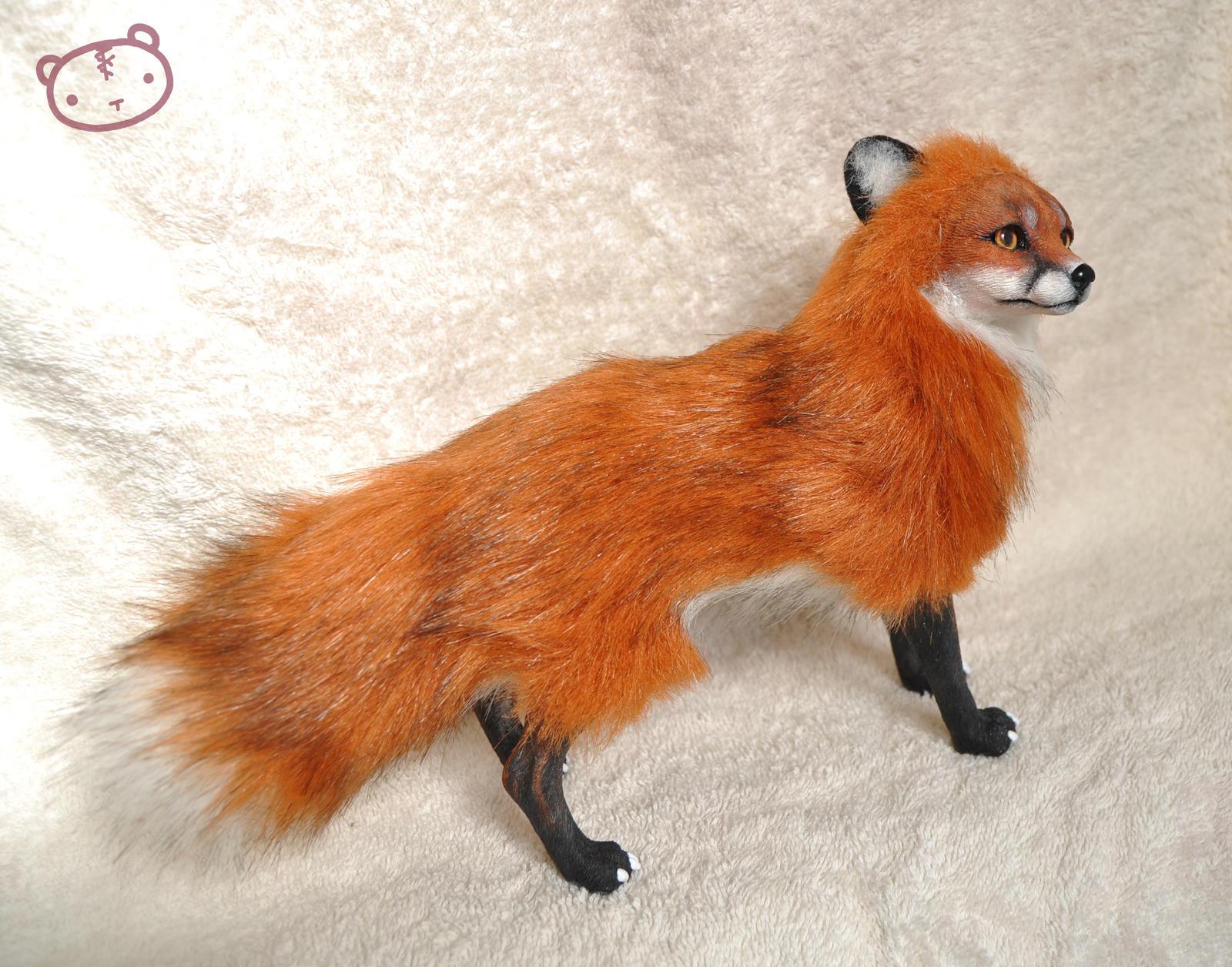 red fox art