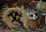 Savannah newborn dragon spirit