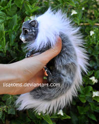 Frosted baby dragon spirit- side face