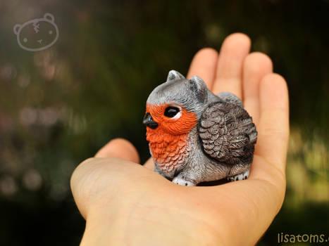 Robin pygmy griffin
