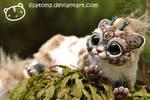 Lynx Chibi Dragon Spirit