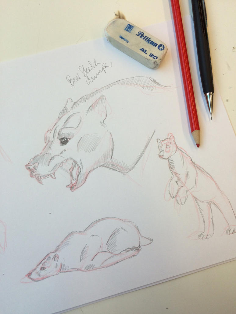 Bear sketches by Laura4Christ