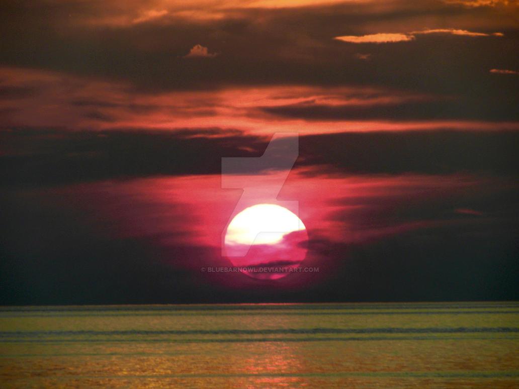 Blood Sun Cradled by Bluebarnowl