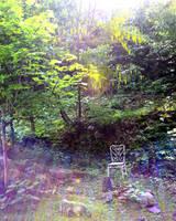 Where my fairies live