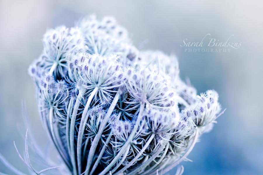 nowandthen. by Blueberryblack