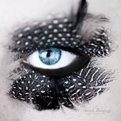 Federauge. by Blueberryblack