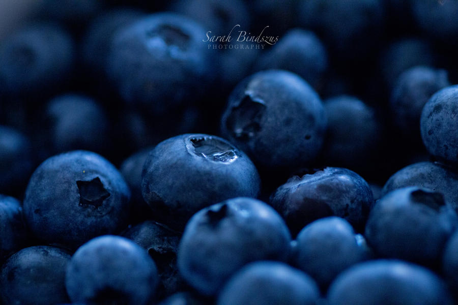 Blueberries. by Blueberryblack