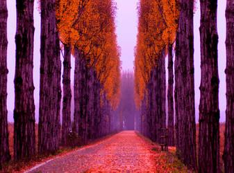 Alley. by Blueberryblack