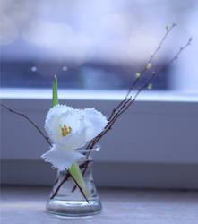 winter flower by Blueberryblack