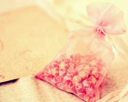 bag of wishes. by munuh490