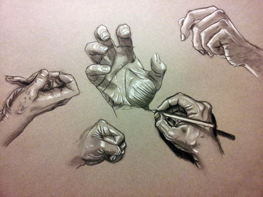 Anatomy Study Hands By Richardblumenstein On Deviantart