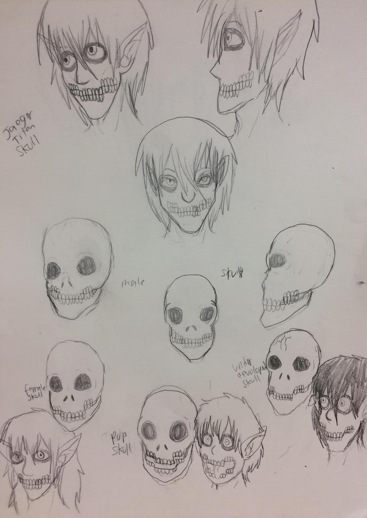 Jaeger Titan skull anatomy by eragoncat07 on DeviantArt