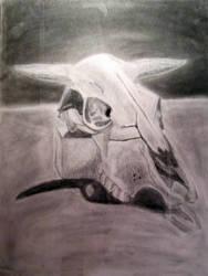 Cow Skull Study by Hawkn93