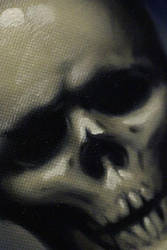 Skull: finished angle shot by LymanDally
