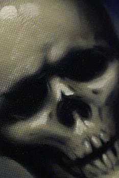 Skull: finished angle shot
