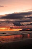 Sunset fishing by medinka