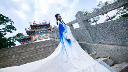 Song Ning by bdrc