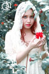 Reverse Red Riding Hood