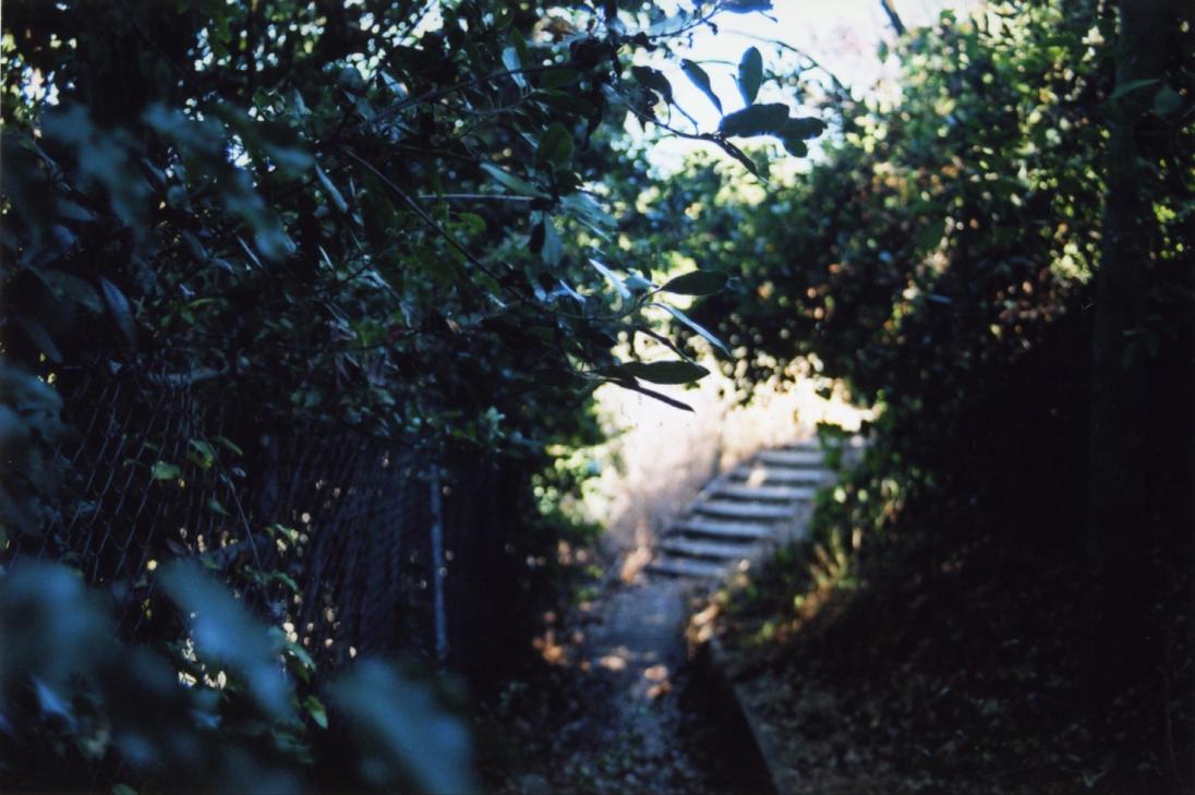 Secret Stairs By LorraineML ...