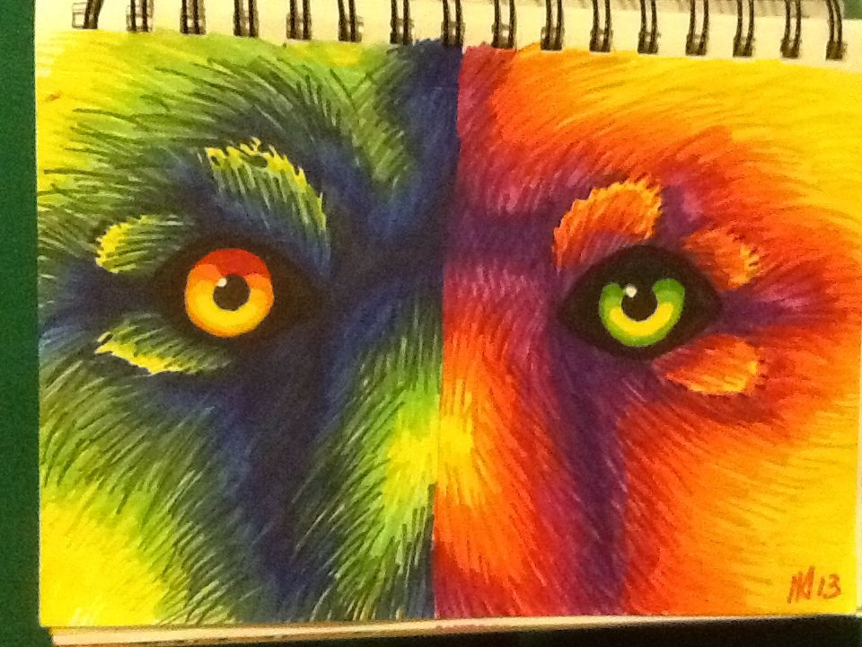 Colorful Wolf Paintings Colorful Wolf Eyes by