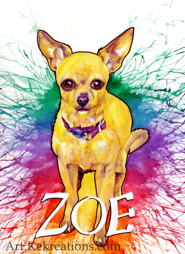 Zoe Commission by Sheltie2b