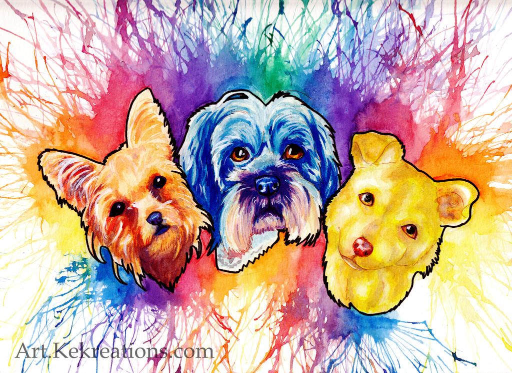 Primary Color Trio by Sheltie2b
