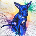Blue Pup Commission