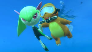SCUBA Freediving