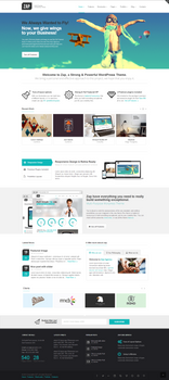 ZAP. WordPress Theme
