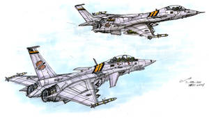 30th FS Aircraft, VFOR