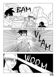 page 17 DBSR